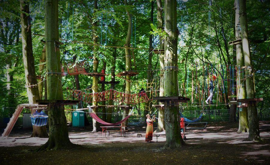 Park Linowy zdjęcie